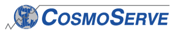 Cosmoserve International Business Consultants